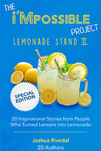 IMPL2 book cover copy